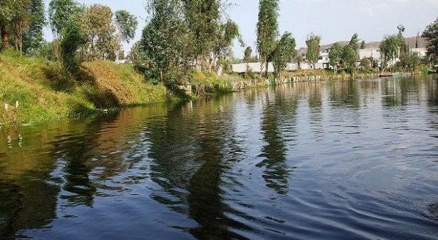 20121225_Lago_de_Xochimilco