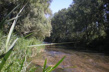 Los efectos del cambio global podrían incrementar todavía más la salinidad de los ríos en muchas regiones del mundo. En la fotografía: río Llobregat en Balsareny. Imagen: Grupo de Investigación FEM-UB