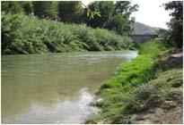 Imagen del río Segura en uno de los tramos donde se pretende entubar. Cedida por Ecologistas en Acción.