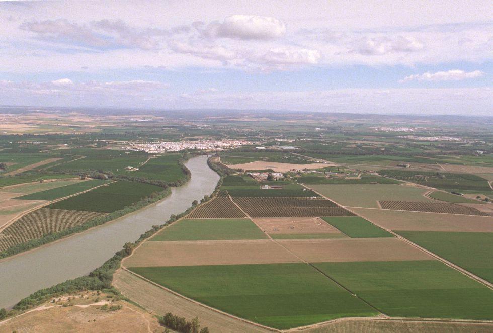 Vista aérea de los cultivos al margen del río Guadalquivir. / García Cordero – EL PAIS