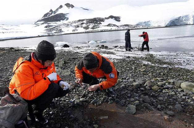 23-febrero-2013-12-36-00-antartic_detalle_media