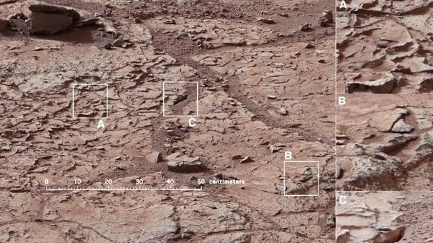 El robot ha enviado imágenes del suelo y las rocas de Marte a la Tierra (NASA/Cortesía).
