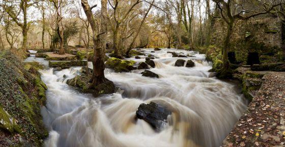 Los pesticidas y fertilizantes de uso agrícola se filtran a las corrientes