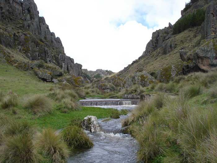 Agua de la Jalca Paramos Colombia