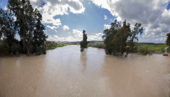 El río Guadalquivir a su paso por el municipio de Mengíbar (Jaén). /El País