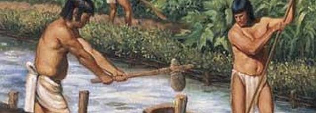 maya-agua--647x231