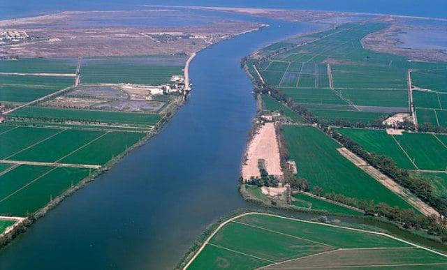 Desembocadura  rio ebro. Foto