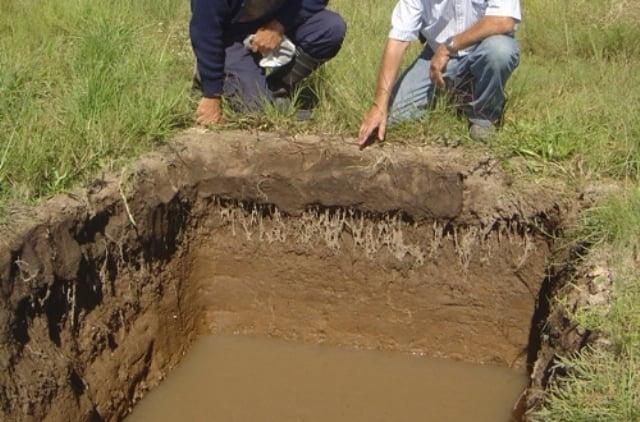 INTA-Recuperación-de-suelos-salinos-sal