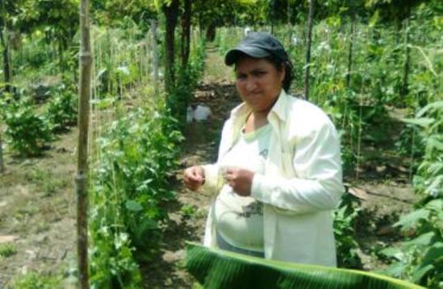 Los-pobladores-de-Manabí-se-beneficiarán-con-la-infraestructura-de-riego-y-drenaje.