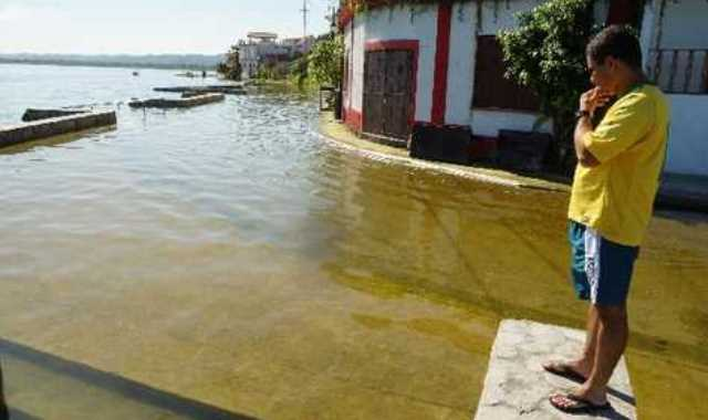 brasileno-Flores-Peten-Mynor-Toc_PREIMA20140302_0031_32