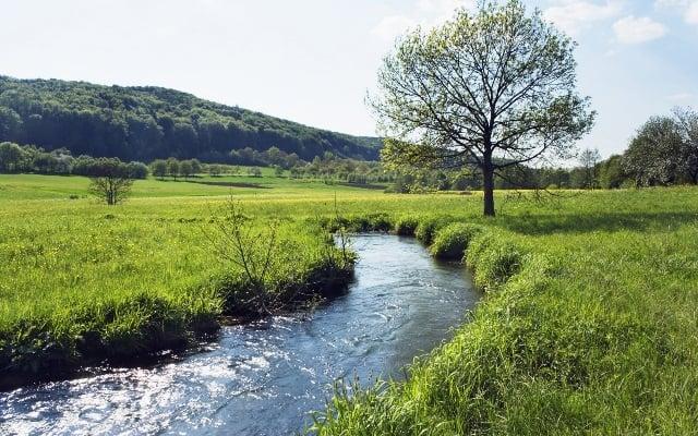 Poema del rio