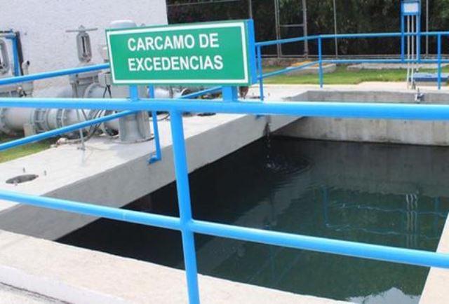 Solo-existen-Mexico-plantas-tratadoras_MILIMA20140509_0612_8