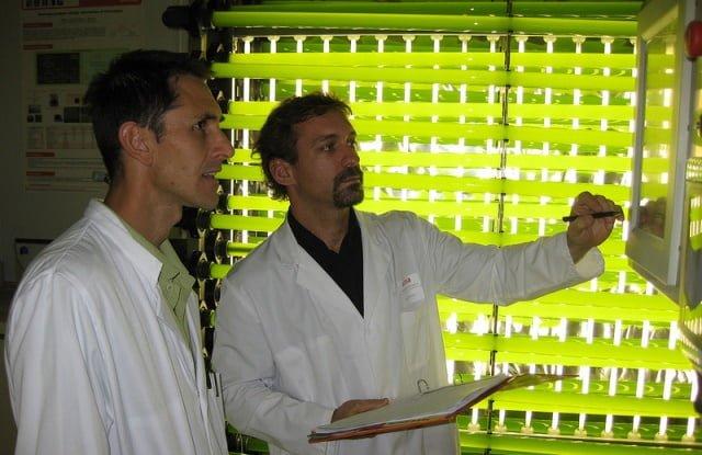 fotobiorreactor de ainia