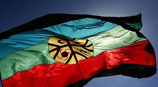 bandera-mapuche-foto-fpmr