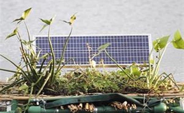 medio-ambiente-2030577w300