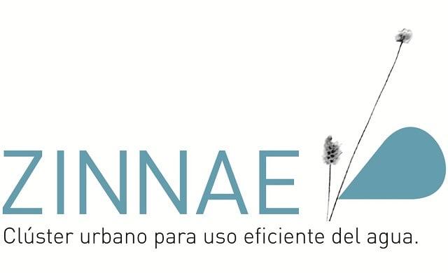 Zinnae Peru