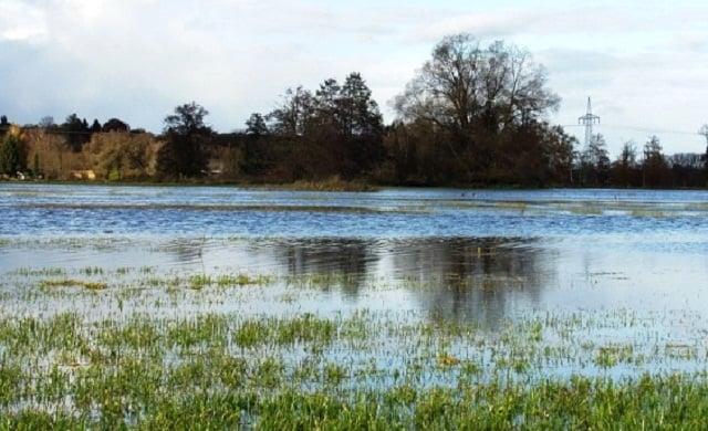 Paisaje fluvial inundado.