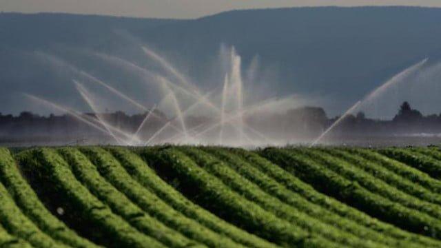 riego campo cultivo