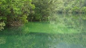 https://www.merca2.es/anbiotek-aplica-una-novedosa-tecnica-genetica-para-determinar-la-calidad-del-agua/